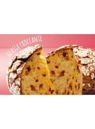 Filippi - Panettone - No Candied Fruit - 1000g