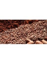 (6 PANETTONI X 1000g) Filippi - Cioccolato Grand Cru Vidama Domori