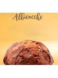 Filippi - Panettone - Apricot - 1000g