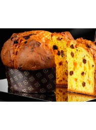 Bonollo - Panettone Of alla Grappa di Amarone Barrique 1000g