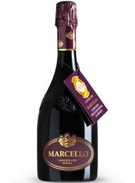 Ariola - Marcello - Gran Cru - Lambrusco IGP - 75cl