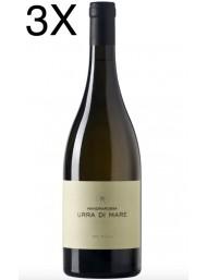 (3 BOTTIGLIE) Mandrarossa - Sauvignon Blanc 2019 - Urra di Mare - 75cl