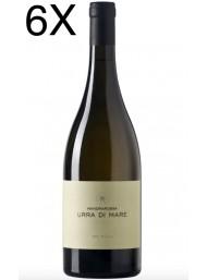 (6 BOTTIGLIE) Mandrarossa - Urra di Mare 2019 - Sauvignon Blanc - Bianco Sicilia DOC - 75cl