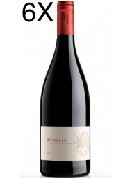 (6 BOTTIGLIE) Musella - Valpolicella Superiore 2017 - DOC - 75cl