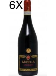 (6 BOTTLES) Musella - Amarone della Valpolicella 2013 - DOCG - 75cl