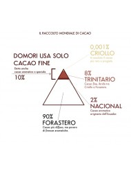 Domori - Fondente 70% - 75g