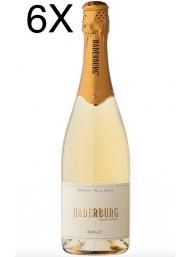 (6 BOTTIGLIE) Haderburg - Brut Metodo Classico - Alto Adige DOC - 75cl