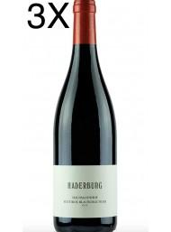 (3 BOTTIGLIE) Haderburg - Hausmannhof Pinot Nero 2018 - Blauburgunder - DOC - 75cl
