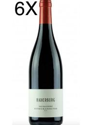 (6 BOTTIGLIE) Haderburg - Hausmannhof Pinot Nero 2018 - Blauburgunder - DOC - 75cl