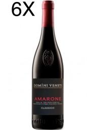 (3 BOTTIGLIE) Domìni Veneti - Amarone 2015 - DOCG - 75cl