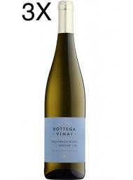 Cavit - Sauvignon Blanc 2019 - Bottega Vinai - Trentino DOC - 75cl