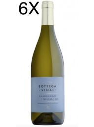 (3 BOTTIGLIE) Cavit - Chardonnay 2019 - Bottega Vinai - Trentino DOC - 75cl