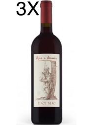 Pojer e Sandri - Pinot Nero 2019 - Vigneti delle Dolomiti IGT - 75cl